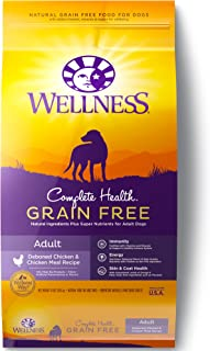 grain free wellness dog food