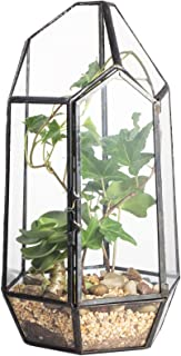 "NCYP 8.66"" Height Closed Irregular Glass Terrarium with Door Succulent Planter Geometric Flower Plant Pot Tabletop Small B..."