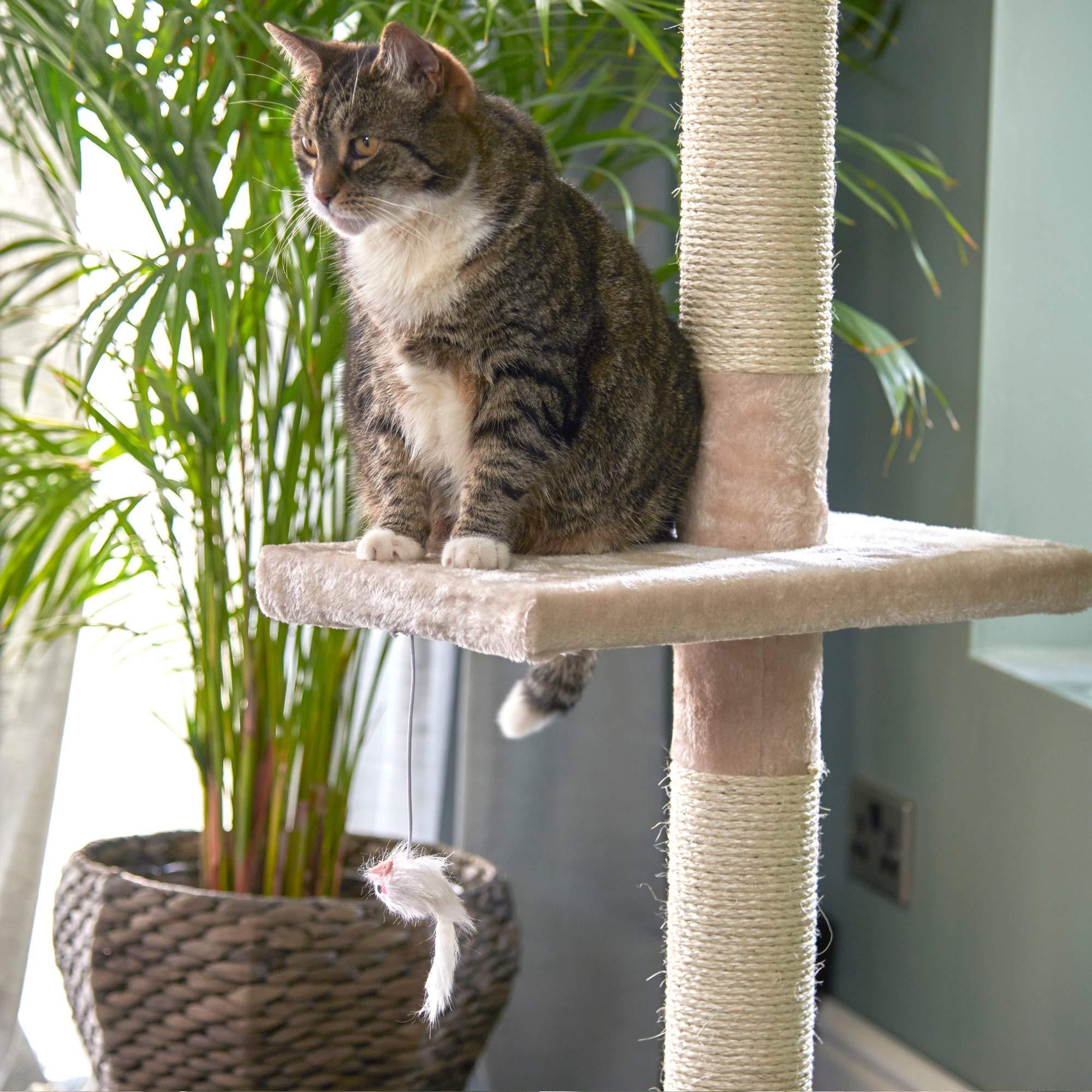Árbol Rascador para Gatos de 240cm-288cm, Rascador de Suelo a Techo para Gatos, Poste Escalador de Sisal Natural, Árbol para Gatos Extensible, Arbol Rascador de Actividades con, Color Beige: Amazon.es: Productos para