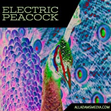 Best the electric peacock Reviews