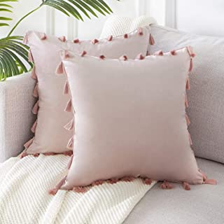 Topfinel Boho Decorative Throw Pillow Covers with Tassels for Couch Bed Sofa Soft Velvet Cushion Covers 16 x 16 Inch 40 x 40 cm, Pack of 2, Blush Pink