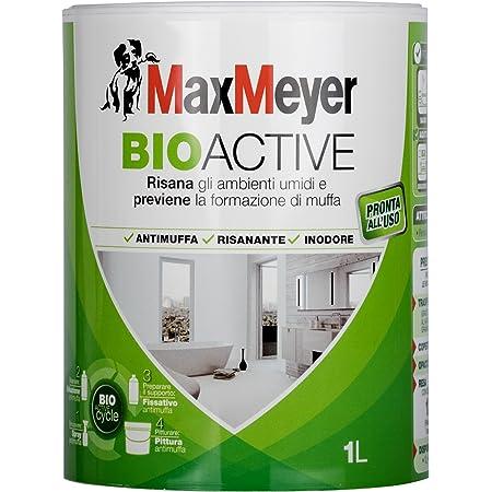 Maxmeyer 163727f500018 Pittura Murale Lavabile Oceano 2 5 Litri Amazon It Fai Da Te