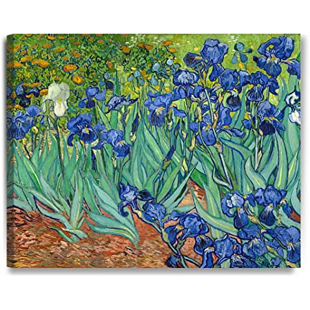 "16/""X 12/"" VINCENT VAN GOGH Irises *FRAMED* CANVAS ART"