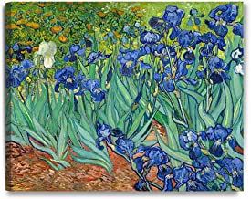 DecorArts - Irises in the Garden, by Vincent Van Gogh. The Classic Arts Reproduction. Art Giclee Print On Canvas, Stretched Canvas Gallery Wrapped. 30x24