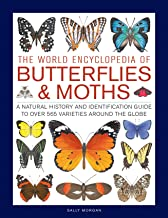Best the world of butterflies and moths Reviews