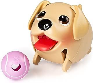 Chubby Puppies Single Pack Golden Retriever