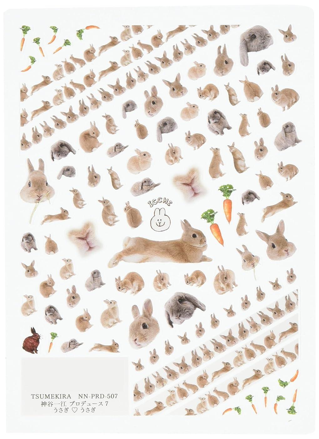 警告するれんが繊毛ツメキラ(TSUMEKIRA) ネイル用シール うさぎうさぎ NN-PRD-507