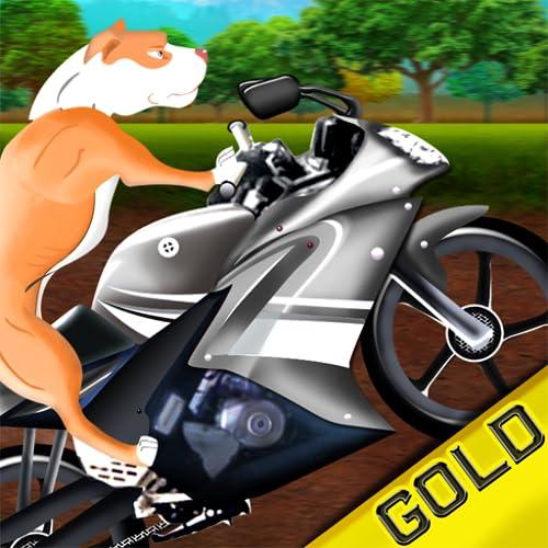 rolando selvagem corrida de motos cão: o mau para a aventura osso - Edição de ouro