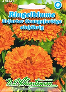 Ringelblume Erfurter Orangefarbige Portion