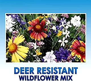 Deer Resistant/Tolerant Wildflower Seeds Bulk + 8 Bonus Gardening eBooks + Open-Pollinated Wildflower Seed Mix Packet, Non-GMO, No Fillers, Annual, Perennial Wildflower Seeds for Planting - 1 oz