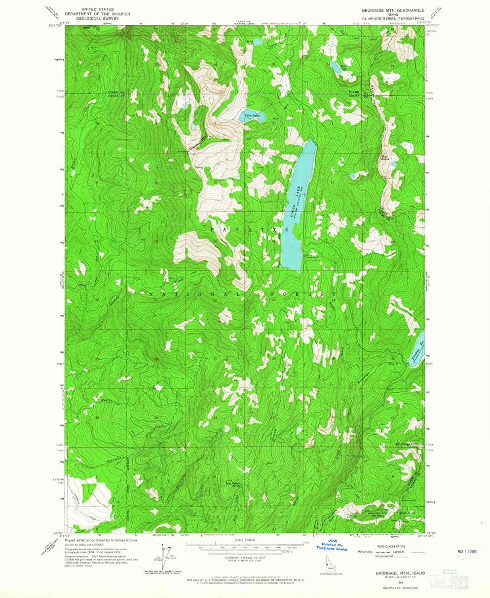 YellowMaps Brundage MTN ID topo map, 1:24000 Scale, 7.5 X 7.5 Minute, Historical, 1963, Updated 1965, 26.8 x 22 in