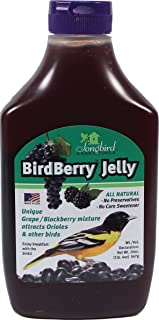 grape jelly for birds