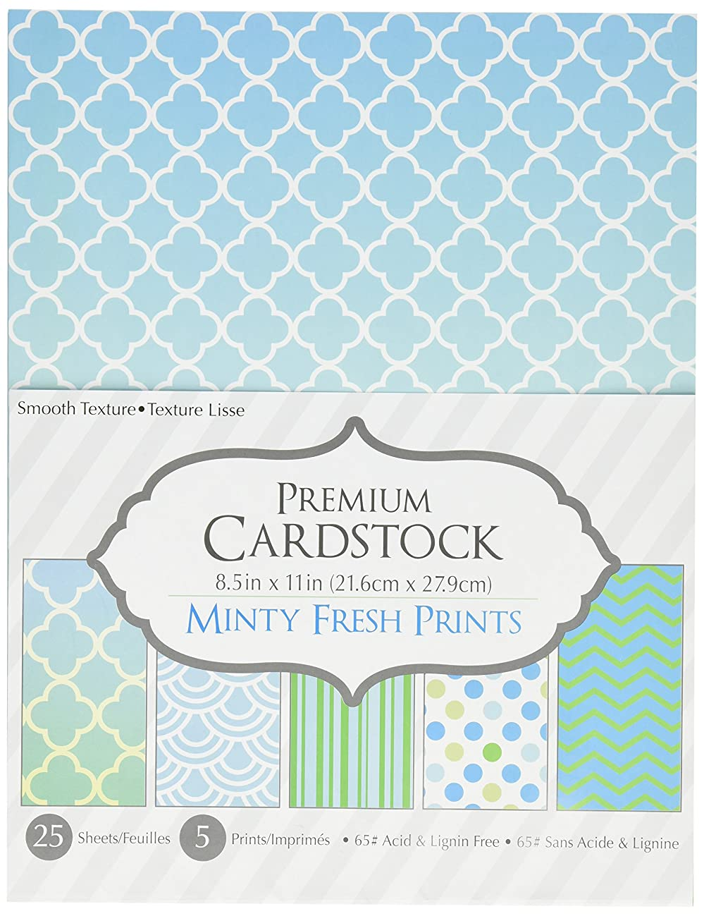Darice Patterned 8.5 by 11 Cardstock Paper Pack, Minty Fresh Prints, 8.5