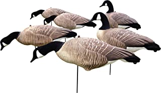 Full Body Canada Goose Decoys - 6 pack - Light Weight EVA - CHEAP!