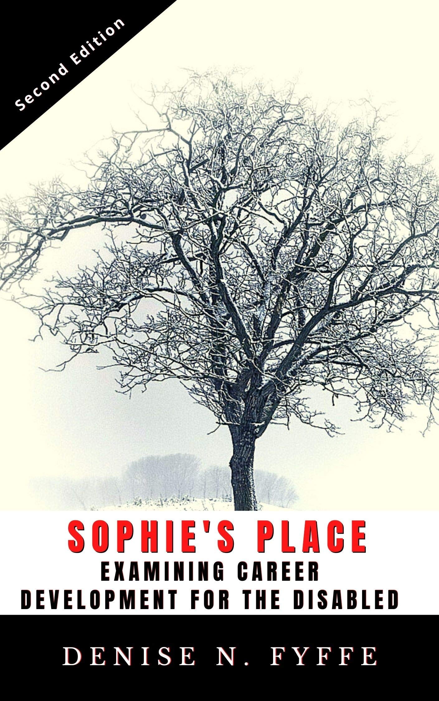 Sophie's Place: Examining Career Development for the Disabled