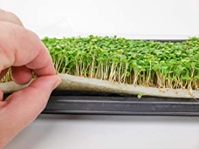 "Biostrate 185 Hydroponic Growing Mats 10"" x 20"" Biodegradable Felt Pads to Grow Microgreens, Wheatgrass and More (10)"