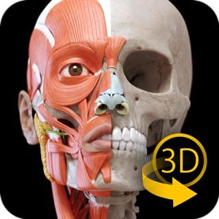 Best art anatomy app Reviews