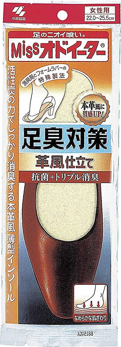 薬授業料冷凍庫ミスオドイーター 足臭対策 革風仕立て インソール 女性用22cm~25.5cm 1足