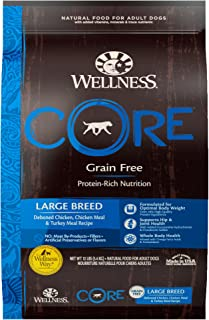 Best wellness large breed adult Reviews
