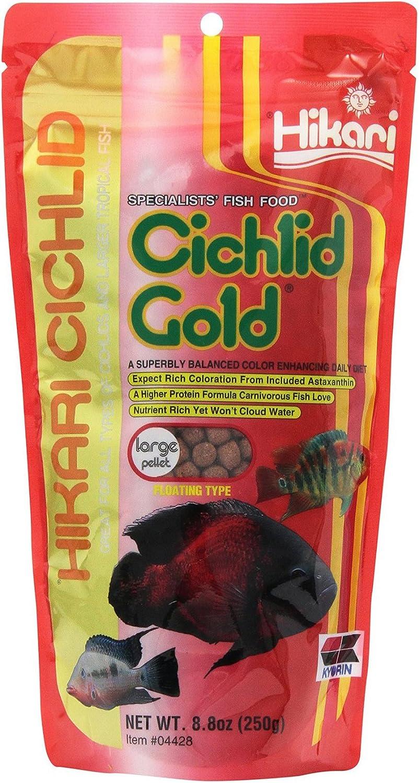 Hikari 8.8Ounce Cichlid gold Floating Pellets for Pets, Large [2Pack[