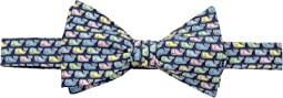 Pastel Whale Printed Bow Tie