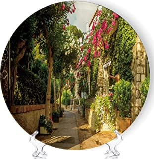 C COABALLA Beautiful Alley Full of Trees and Flowers on Capri Island Art Fashion Decorative Ceramic Plates Display Plate Crafts,with Stand,for Living Room of The Home,8''