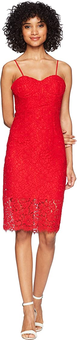 Pierre Lace Dress
