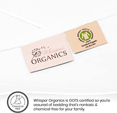 Whisper Organics, Queen Bed Sheet - 100% Organic Cotton Fitted Sheet - 300 Thread Count, Fitted Sheet Only - GOTS Certified -
