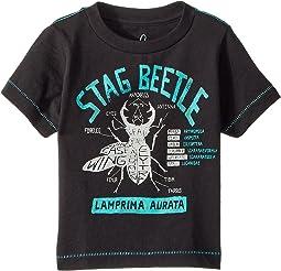 PEEK Stag Beetle Tee (Infant)