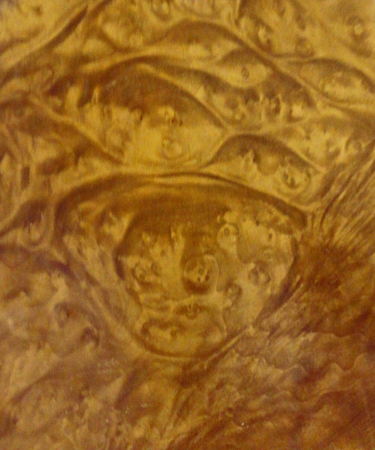 Madrone Burl wood veneer 7