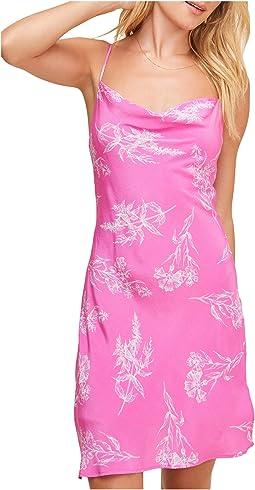 Azalea Pink Floral
