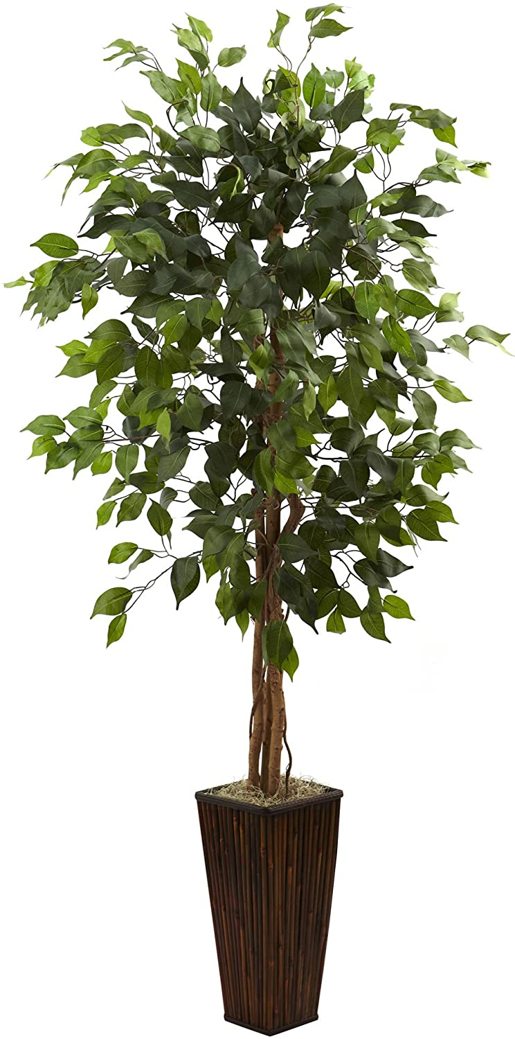 Fort Worth Mall Nearly Natural 5924 5.5ft. Ficus Green Tree 70% OFF Outlet Bamboo with Planter