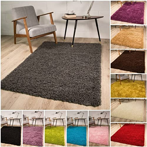 The Rug House Thick Modern Small Medium Soft Anti Shed Luxury Vibrant Shaggy Rugs (Grey