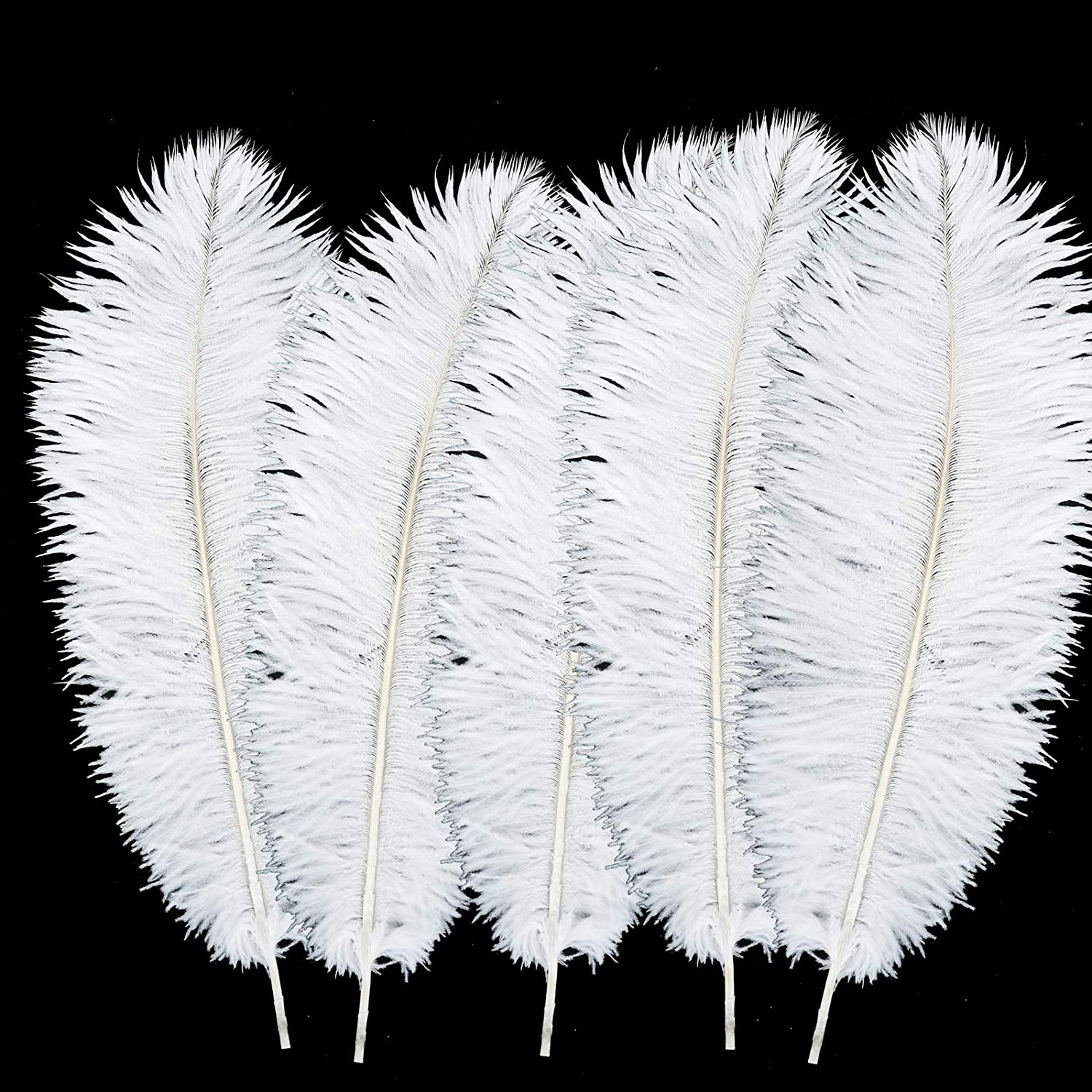 Store 30 Pcs White Real Ostrich We OFFer at cheap prices Feather 6-8 Inches Natural Fe