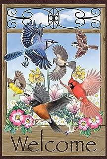 Toland Home Garden 119809 Welcome Wings 12.5 x 18 Inch Decorative, Garden Flag (12.5