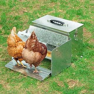poultry trough