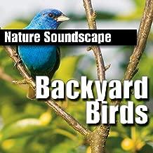 Backyard Birds (Nature Sounds Only)
