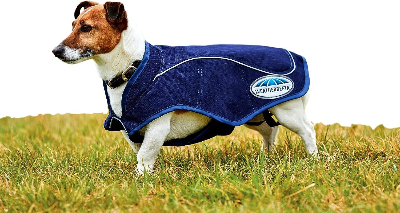 "Weatherbeeta 1200D Exercise Dog Coat, Navy, 24"" : Pet Supplies"