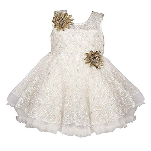 2241a84d09d Wish Karo Baby Girls Frock Birthday Dress for Girls - Net - (bxa06)