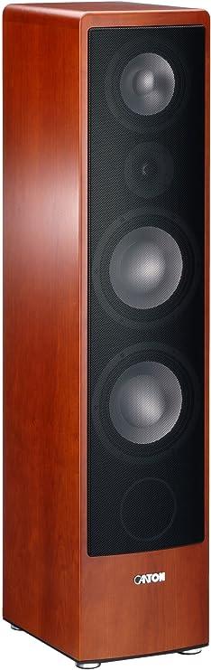 Canton Ergo 695 Dc 3 Wege Bassreflex Standlautsprecher 200 350 Watt Bi Wiring Bi Amping Anschlussfeld Kirsch Stück Audio Hifi