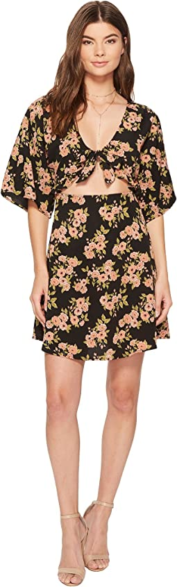Amuse Society - Floral Envy Dress