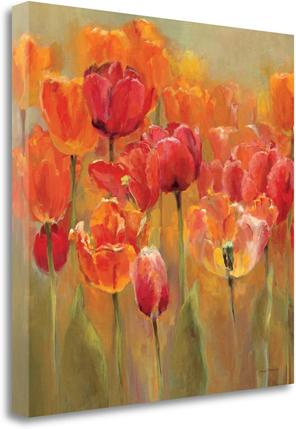 Tangletown Fine Art Tulips In The Midst Iii Print On Gallery Wrap Canvas 39 X 26 Multi Posters Prints