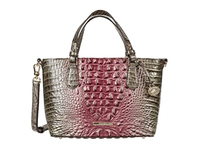 Brahmin Ombre Melbourne Mini Misha Satchel (Garnet) Handbags