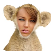 Best sexy monkey images Reviews