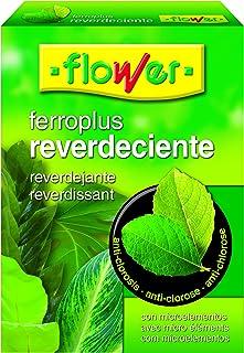comprar comparacion Flower 15502 15502-Reverdeciente, 250 g, No Aplica, 10.3x3.7x14.5 cm