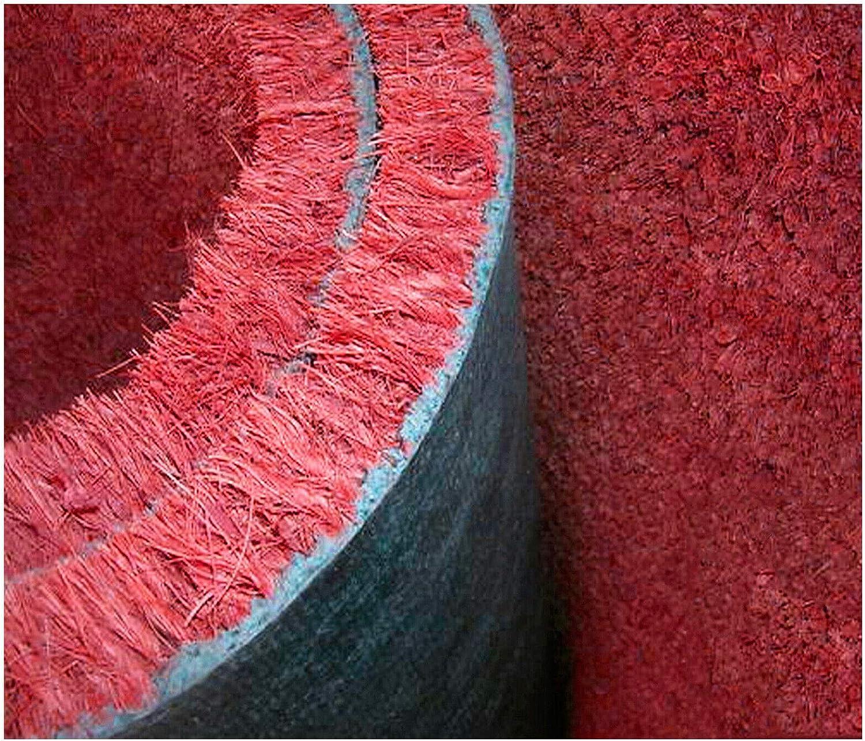 B Paillasson en cocotier naturel 25 x 50 cm envers antid/érapant grattoir boue r/ésistant entr/ée maison mod/èle couleur