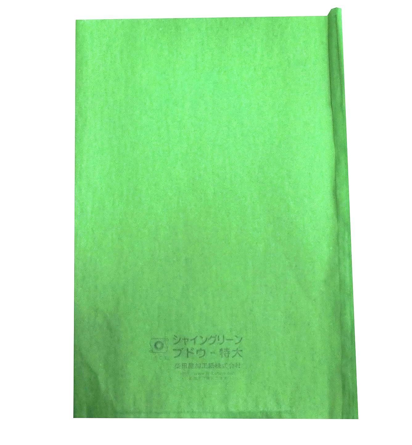 マーティンルーサーキングジュニア嫌な投資する緑ぶどう 専用 シャイングリーン ブドウ袋 特大 218×315mm (100枚入)