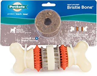 PetSafe Large Sportsmen Bristle Bone Pet Chew Toy