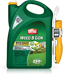 Best weed killers for lawns