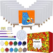 MEEDEN 43-Piece Acrylic Painting Set, 12Beech Wood Easels and 12Stretched Canvas, 12×16ML Acrylic Paint Set, 3Paintbrushes...